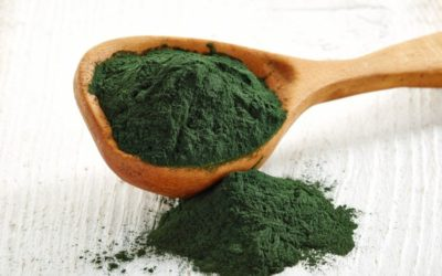 Spirulina and Chlorella